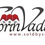 Sorin Vaduva_Logo